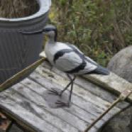 made-ile-decoration-ile-doleron-oiseau-avocette-bois-20007-ch-site