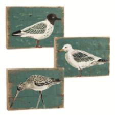 made-ile-panneau-oiseau-mer-011429-sp-site