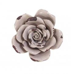 made-ile-rose-6247789-ll-site-site