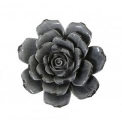 made-ile-rose-6247831-ll-site